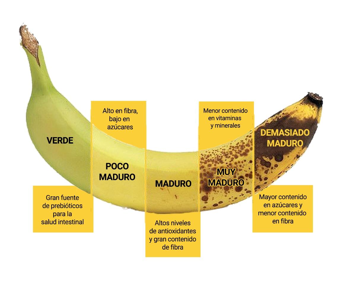 Cuándo Comer Un Plátano Para Sacar El Máximo Beneficio Plátanos Ruiz
